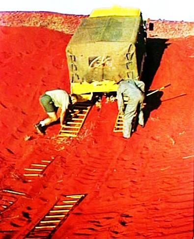 Desert sandladdering (Large)